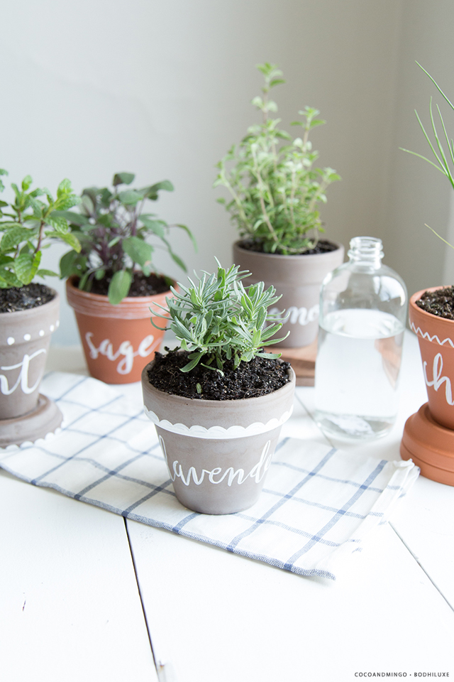 01_Herb-planters_BodhiLuxe